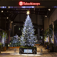 新宿タカシマヤタイムズスクエアクリスマスイルミネーション2016